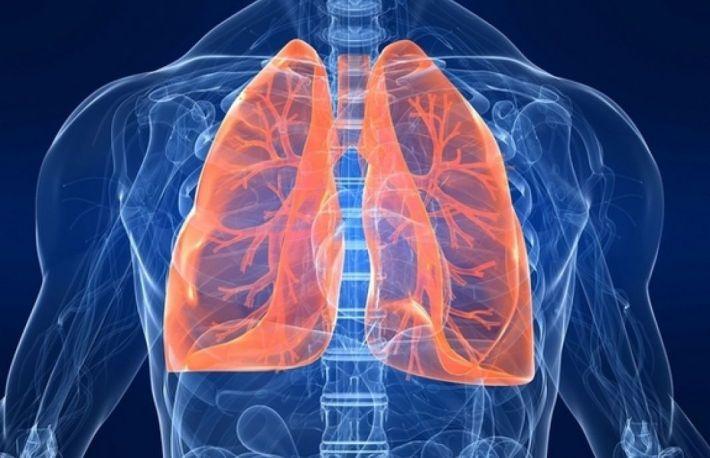 Cum sa-ti cureti plamanii in doar 3 zile. 10 plante care iti redau sanatatea pulmonara